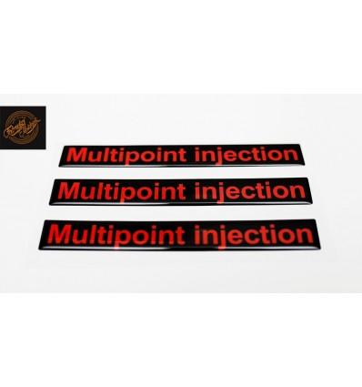 Multipoint injection
