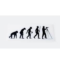 Foto Ewolucja